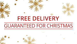 Christmas Delivery Guaranteed Banner