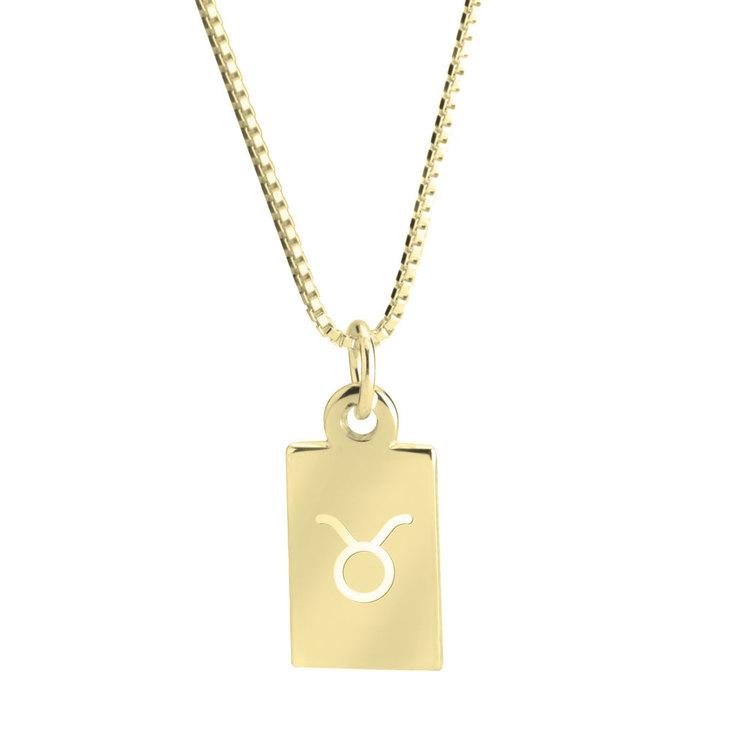 Delicate Zodiac Necklace